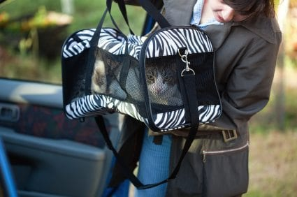 woman carrying cat carrier