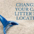 changing your cat's litter box location