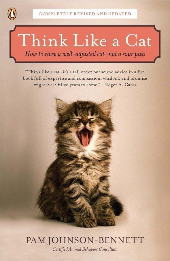 Tags: cat anal sniffing, cat communication, cat hinquarters, cat pheromones, ...