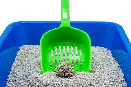 litter box with litter scoop