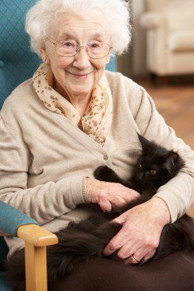 senior citizen holding a cat