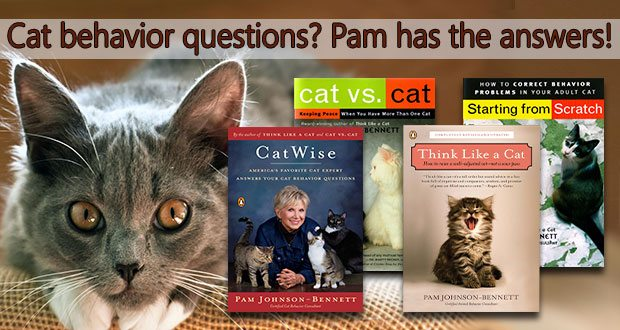 Pam Johnson Bennett's books