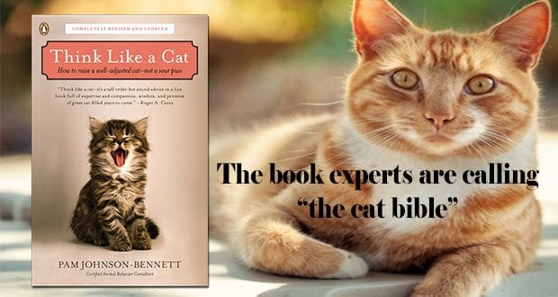 Think Like a Cat by Pam Johnson-Bennett, CCBC