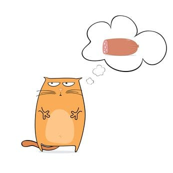 cartoon cat is dreaming of the sausage