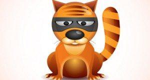 cat in a mask