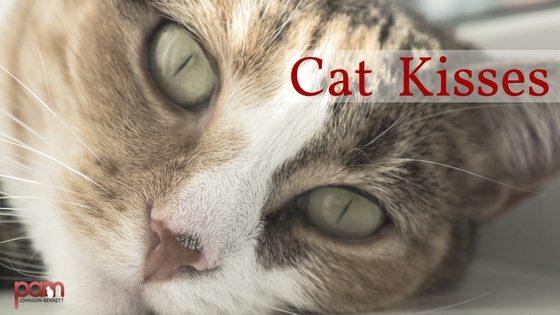 cat-kisses