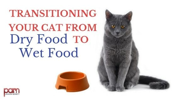 Transitioning From Dry Cat Food To Wet