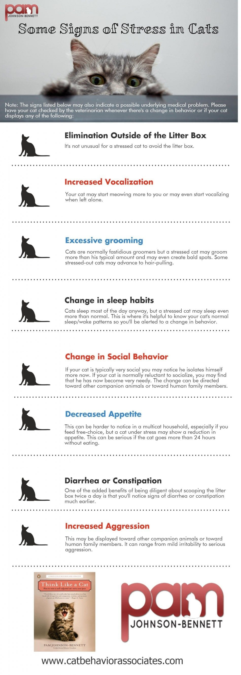 signs of stress in cats infographic