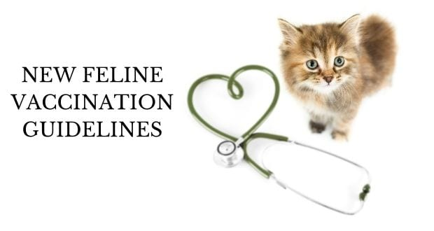 new feline vaccination guidelines