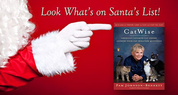 santa's list catwise