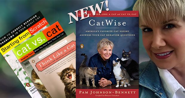New book CatWise
