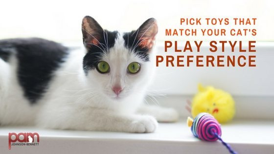 pick toys that match your cat's play style preference