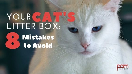 8 mistakes to avoid