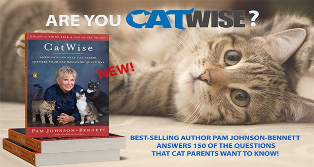 are you catwise?
