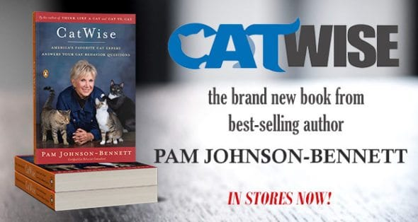 catwise new book available to order