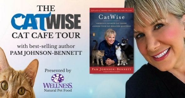 CatWise Cat Cafe Tour with Pam Johnson-Bennett