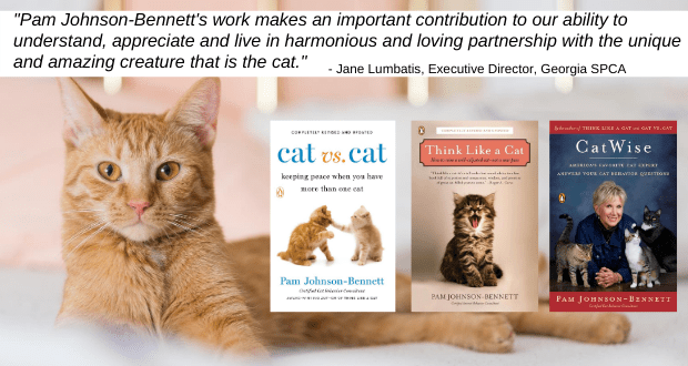 cat books by pam johnson-bennett and quote from Georgia SPCA