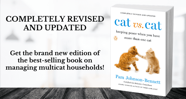 Cat vs Cat book by Pam johnson-bennett
