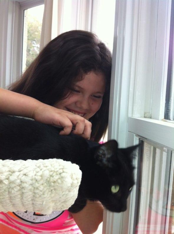 child petting black cat