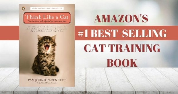 amazon's best-selling cat training book