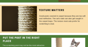 scratching post basics