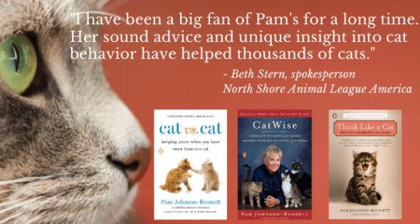 three books by author Pam Johnson-Bennett and a quote from Beth Stern