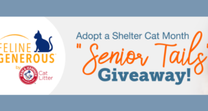 senior tails giveaway